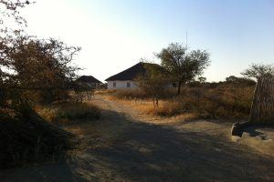 Camping in Botswana: Hitze und Trockenheit