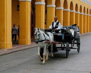 Horse Coach in Cartagena