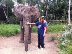 Elephant Sanctuary in Plettenberg Bay
