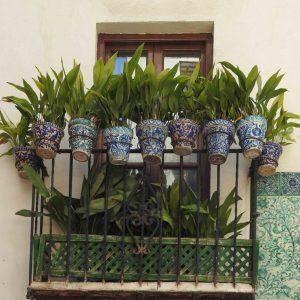 One Day In Granada Spain