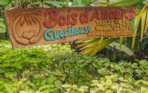 Seychellen Urlaub, Bois d'Amour