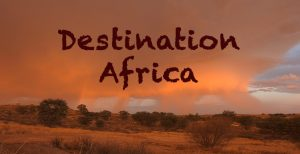 Destination Africa - Travel