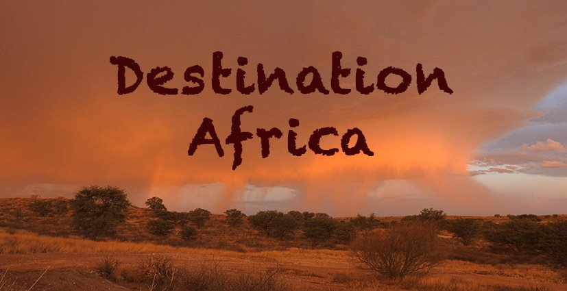 Destination Africa - Travel - Find the best African Countries to visit for nature and wildlife safari enthusiasts or for beach fans and paradise island seekers in the Indian Ocean.