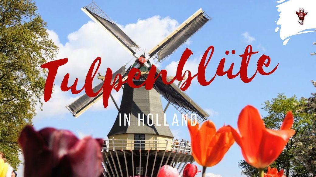 holland einwohner 2020