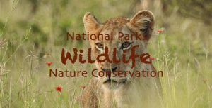 National Parks Wildlife Nature Conservation
