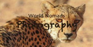 Photography Art Nomad Studio - The Photography Art Nomad Studio with breathtaking photos of wildlife and nature, tips for the amateur photographer and the best camera for safari.