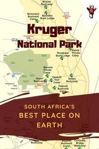 Visiting Kruger National Park, best place on earth? Here you find all you need to know for your Kruger National Park Safari. Visiting Kruger National Park, best place on earth? Here you find all you need to know for your Kruger National Park Safari. kruger national park south africa safari - kruger national park south africa camps - kruger national park south africa lodges - kruger national park south africa tips - kruger national park wildlife - kruger national park lodges safari - kruger national park lodges camps - kruger park south africa safari - kruger park south africa lodges - kruger park lodge south africa - kruger park safari - south africa safari kruger - south africa safari lodge travel planner - south africa travel safari trips.