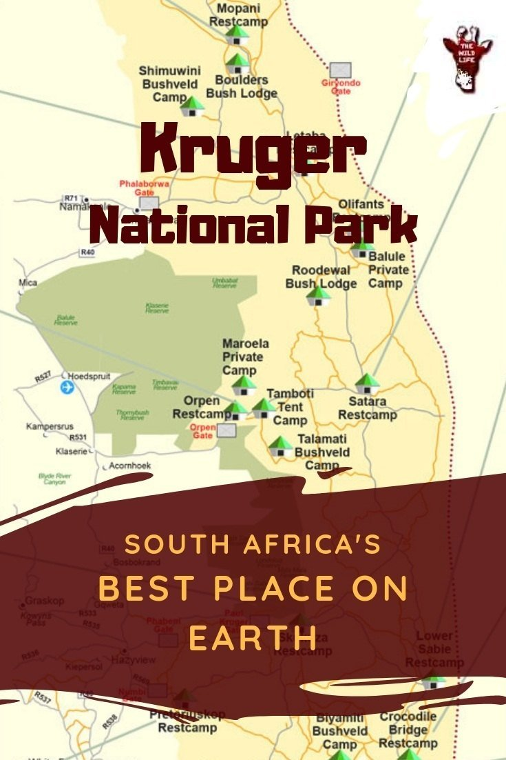 Kruger National Park Road Map on thula thula map, national park to park highway map, victoria falls map, djuma game reserve map, gauteng map, pilanesberg national park map, johannesburg map, mala mala map, grand canyon map, mount kilimanjaro map, sequoia national park california map, line of control map, limpopo river map, kenya map, alaska national parks map, mpumalanga map, swaziland map, cape town map, knysna map, sabi sabi map,