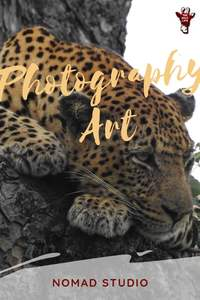 The Photography Art Nomad Studio with breathtaking photos of wildlife and nature, tips for the amateur photographer and the best camera for safari - art photography wildlife - photography art - wildlife photography - nature photography - best camera for beginners - best camera for safari - safari photography #amateurphotographer #wildlifephotography #safariphotography
