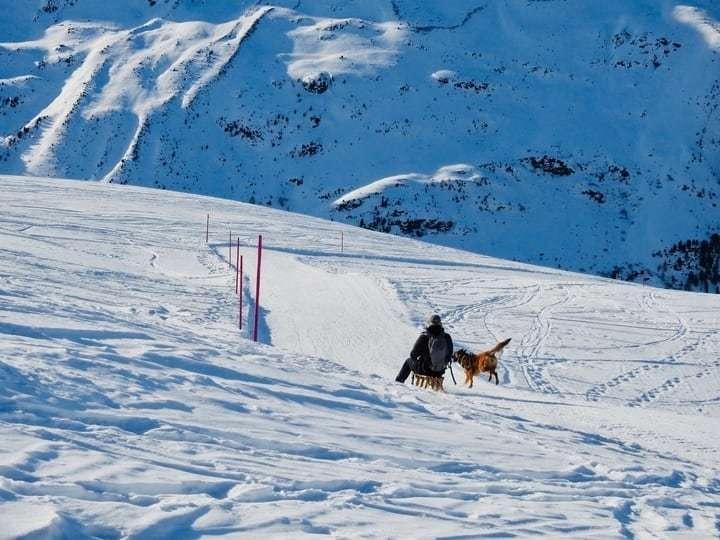 Urlaub im Winter - Ferienwohnung Davos